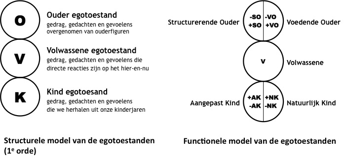 structureel en functioneel model
